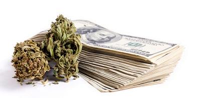 Marijuana & Cash