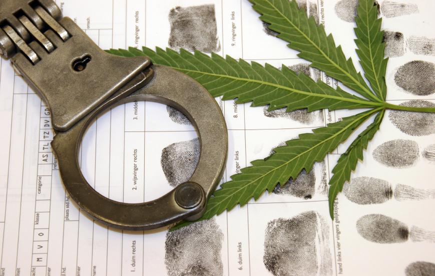 marijuana arrest