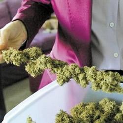 Medical Marijuana in Minnesota