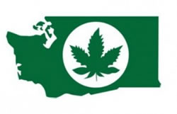 Washington State Liqour Control Marijuana Logo