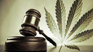 Marijuana Gavel