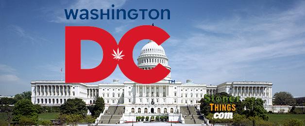 MMJ in Washington D.C.
