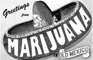 Mexicans and Marijuana