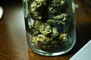 Weed in Jar