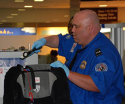 Transportation_Security_Administration_officer_screening_a_bag