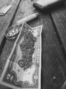 dollarbillweed