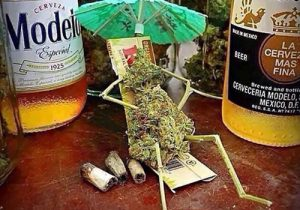 weed dude chillin