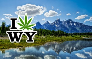 wyoming pot legalization