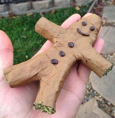 It s a  gingerbread man Octopus Blunt