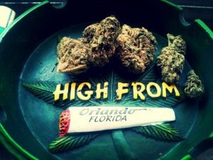 high from florida