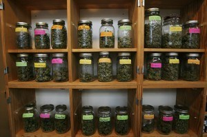 dispensary jars