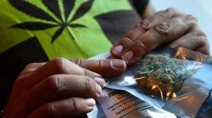 medical marijuana bags