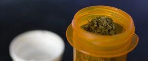 medical marijuana prescription