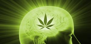 Alzheimer's marijuana