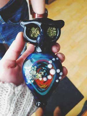 Glass owl marijuana pipe
