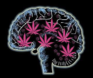 seizures brain marijuana