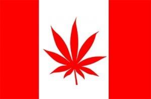 canada marijuana flag
