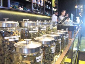 buds in jars pot shop