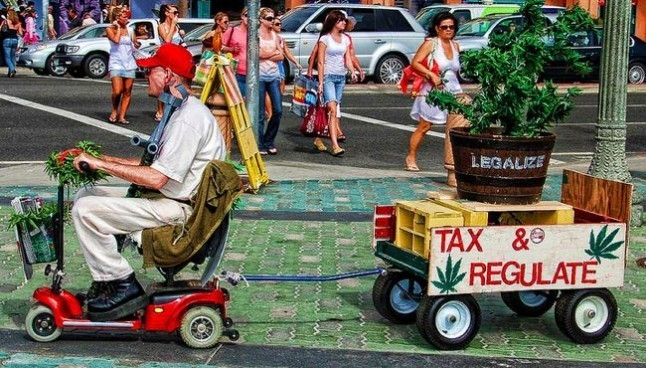 old guy tax regulate marijuana