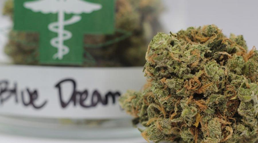 Best indoor weed strains