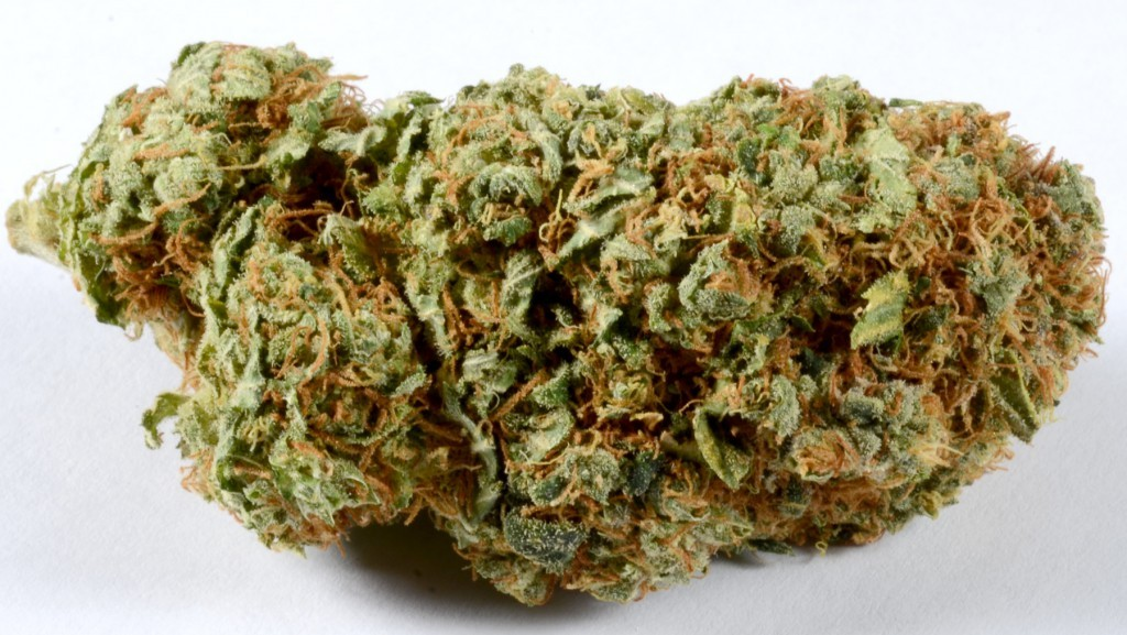 Best kush strains