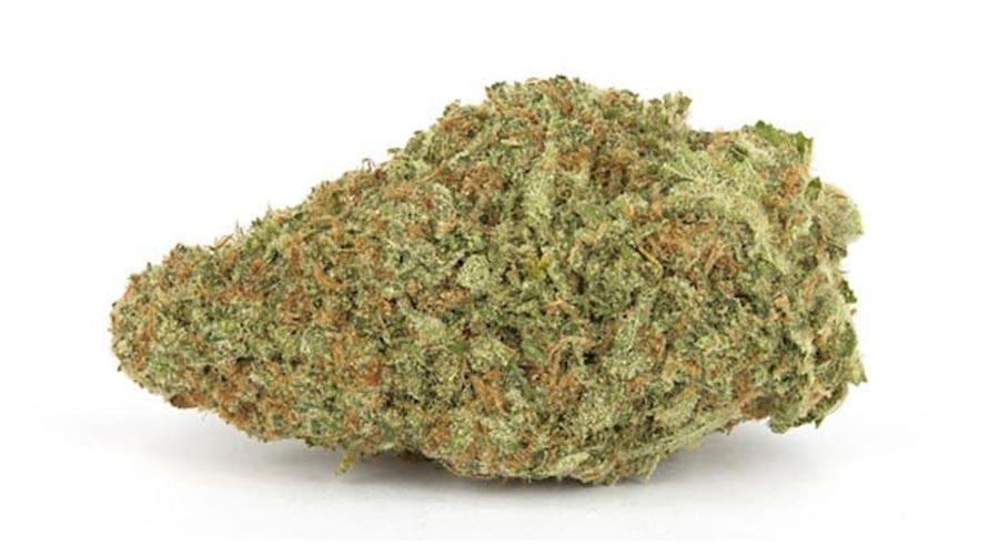 Best outdoor cannabis strains