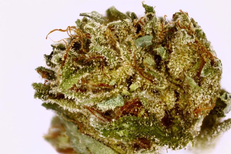 Hindu Kush Weed