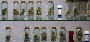 nugs in jars