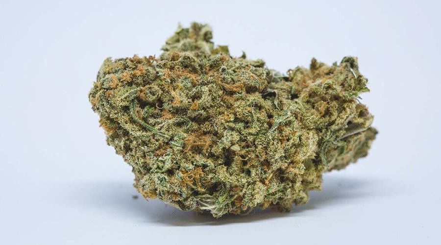 weed strains for indoor grows