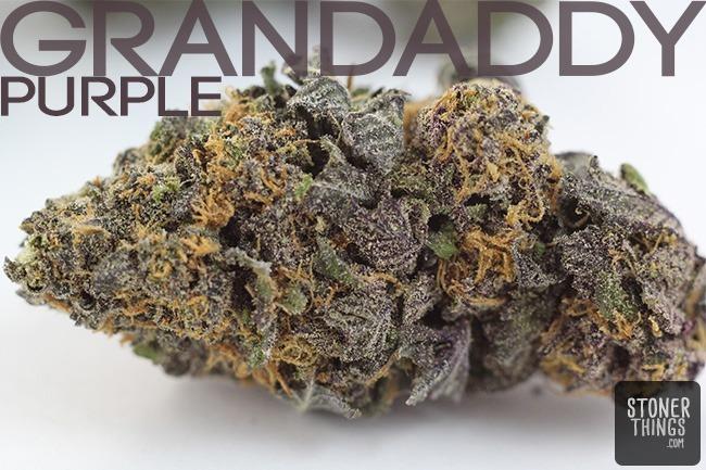 Marijuana strain Grandaddy Purple