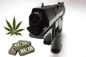 gun weed money