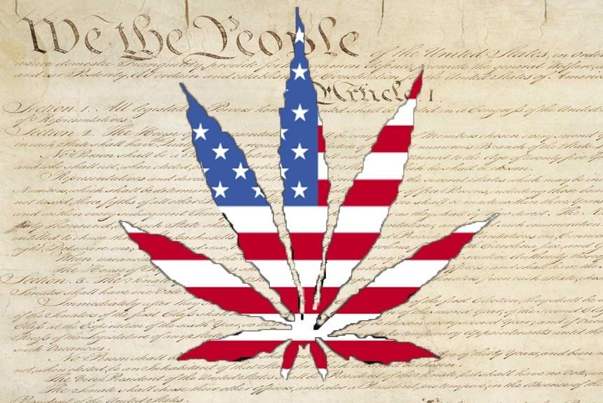 leaf constitution