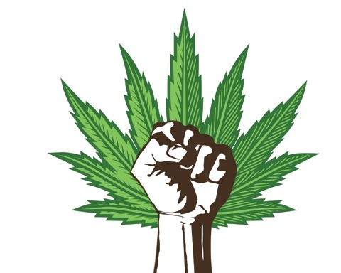 marijuana legalization support