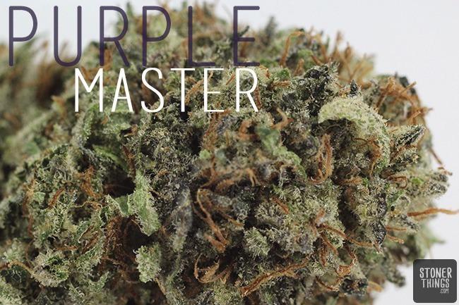 Purple-Master