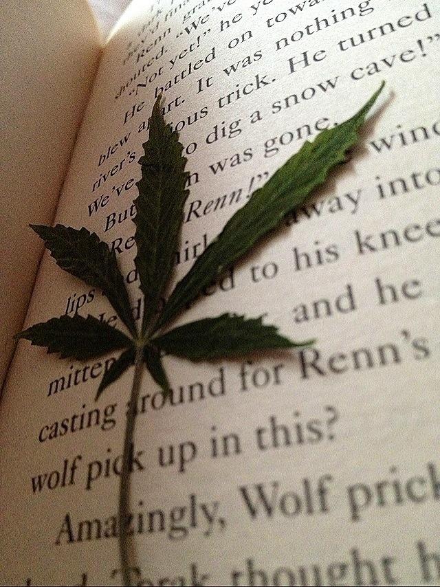 marijuana leaf book