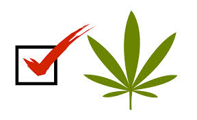 Marijuana Voting