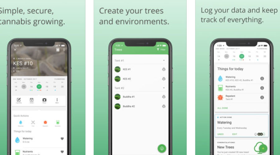 Grow With Jane Cannabis Cultivation App