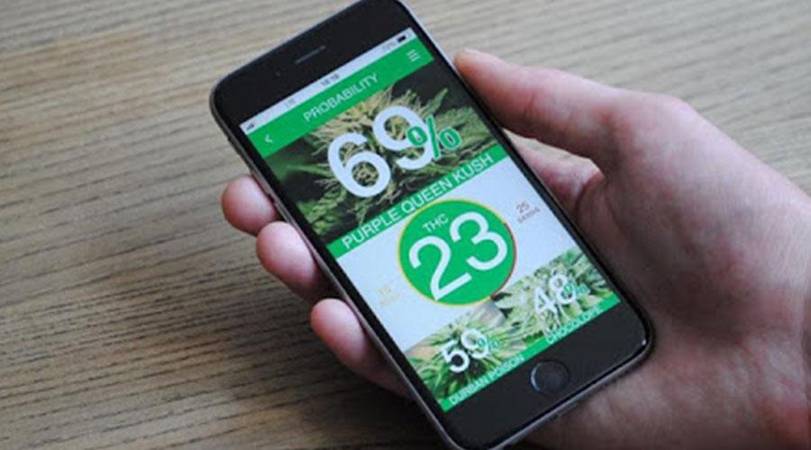 Kush Scan cannabis app