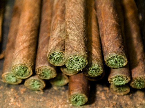 best cigars for weed