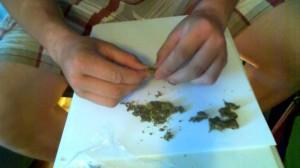 Grinding Marijuana by Hand