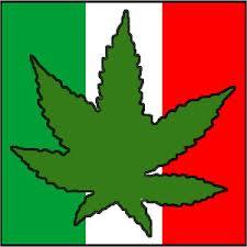 Mexico Marijuana Flag