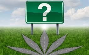Marijuana Philosophy Question