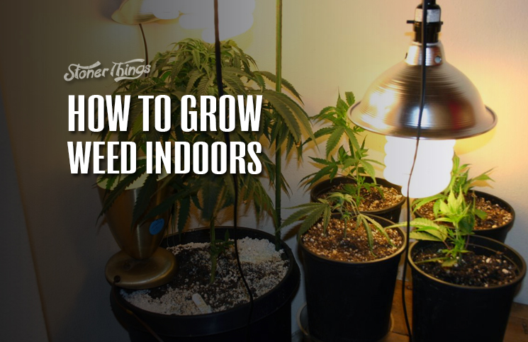 How To Grow Weed Indoors Stoner Things