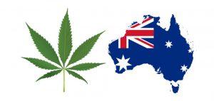 Australia Marijuana