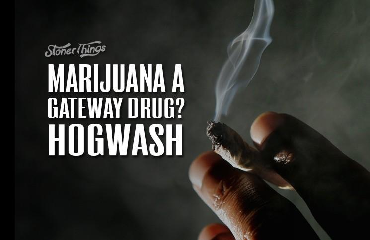 Marijuana A Gateway Drug Hogwash Stoner Things