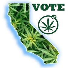 California Marijuana Vote