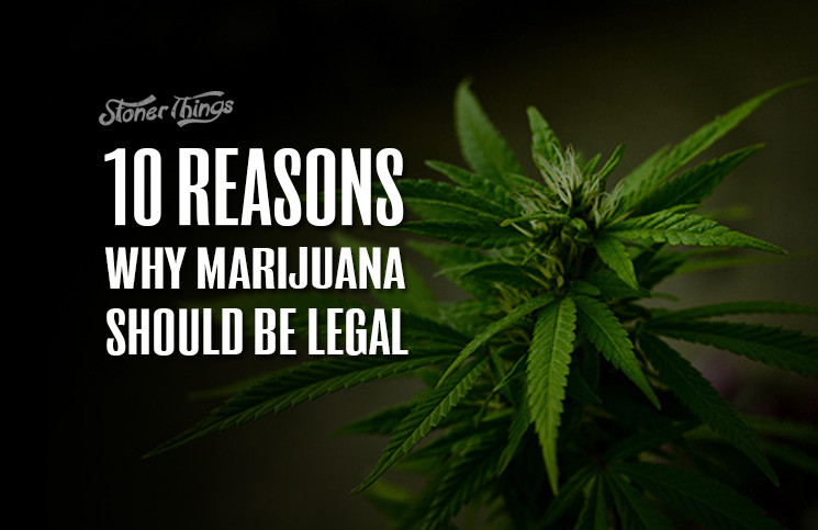reasons why marijuana should be legal stoner things
