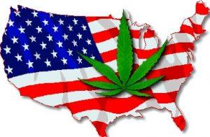 Marijuana American Map