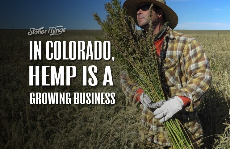 an essay on growing and cultivating hemp