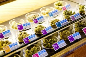 Marijuana Store Pot Shop